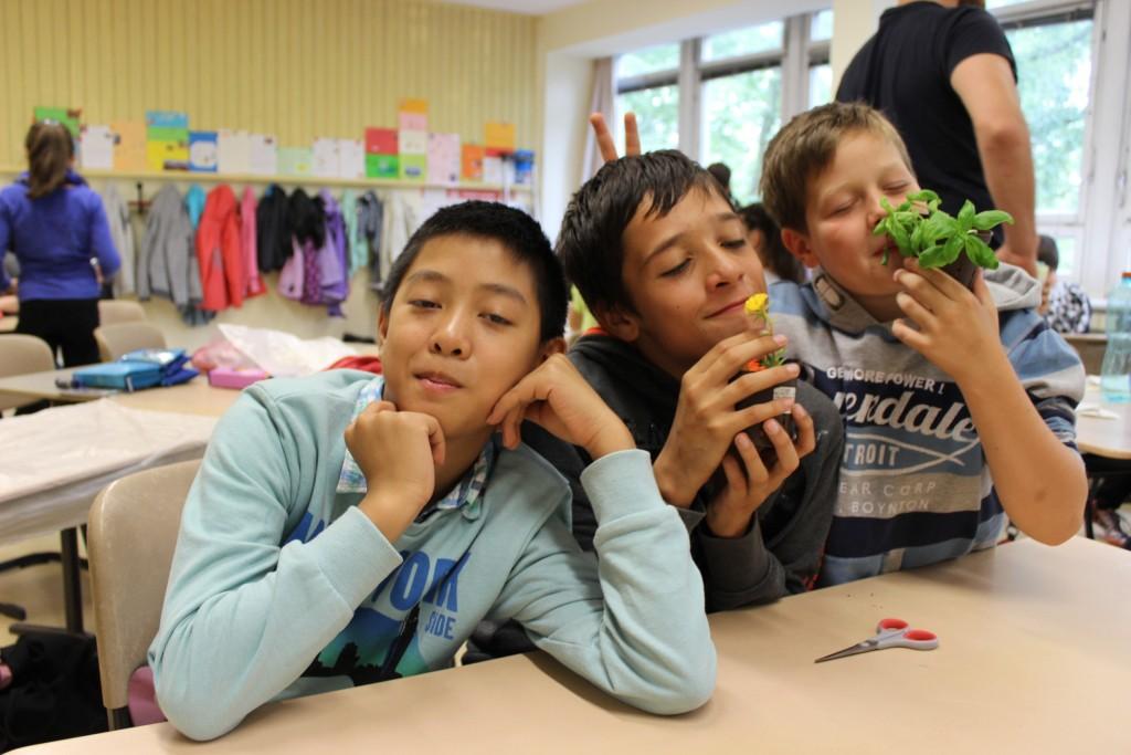 """RWF-Schülerworkshop """"Window-Farming"""" an der Peter-Pan-Grundschule in Berlin-Marzahn am 11.09.2014 (c) RWF"""