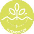 pikto_hydroponik