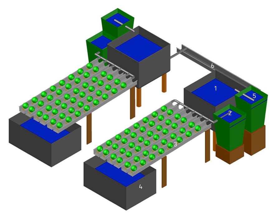 Schematische Darstellung der Aquaponikmodule (1 – Fischbecken; 2 – Sedimentationsstufe; 3 – Hydroponik; 4 – Wassersammelbehälter; 5 – Biofilter; 6 – Spülwasserablauf).  Grafik: Terra Urbana